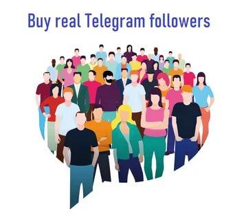 what is telegram member adder script really?