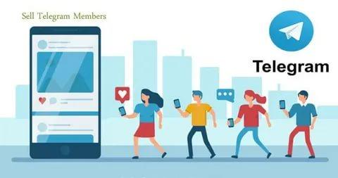 Buy Telegram vote easy
