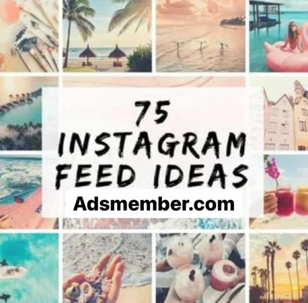 What Is an Instagram Feed?